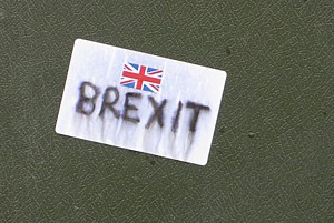 BREXIT flickr D-Smith