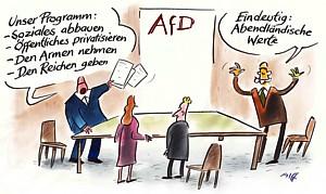Afd-Programm-Allf