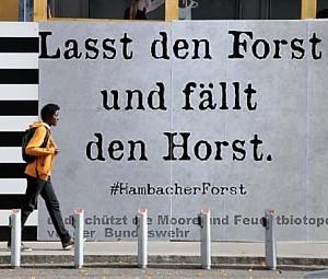 Hambacher Wald 2018 09 16 7