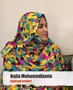 Live-Zoom-Gespräch mit Najla Mohamedlamin